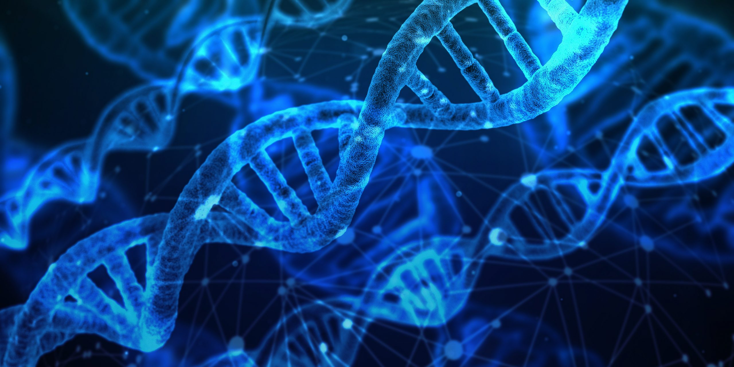 dna-3539309-copy-scaled